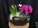 Cosuri cu plante_70