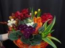 Cosuri cu plante_74