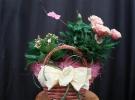 Cosuri cu plante_87