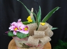Cosuri cu plante_89